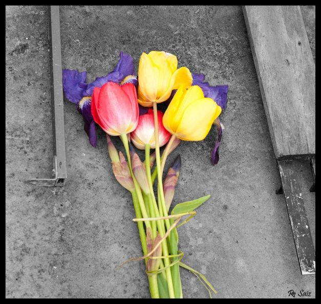 Cuando llegamos allí, el sábado por la mañana, estas flores ya estaban. La Memoria, siempre viva. Foto: Elena Alonso